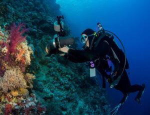 Margo Cavis underwater